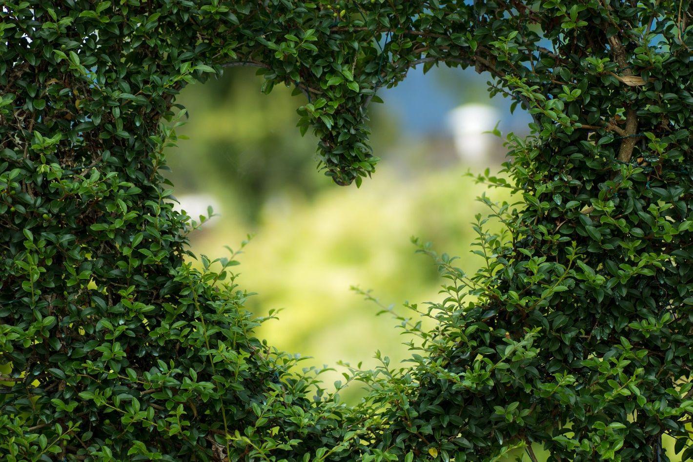Krjeposti Srca Isusova u srcu majke M. Amadeje